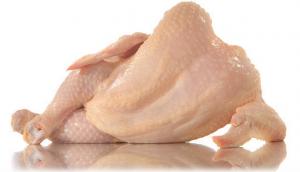 Pollo indigesto